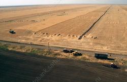 Аграрии области получили 65 млн за утраченный урожай