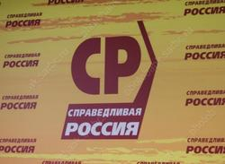 Чеботарева согласовали на пост главы реготделения 'Справедливой России'