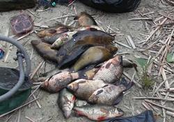 Задержаны двое рыбаков с сетями