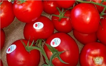 Роспотребнадзор рассказал красноярцам, как по наклейкам распознать полезные фрукты и овощи из-за рубежа
