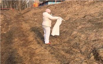 На днях от клещей в Красноярске обработают первые 50 гектаров. Гулять там не советуют