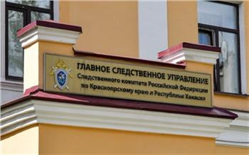 После исчезновения ребенка в Красноярске возбудили дело об убийстве