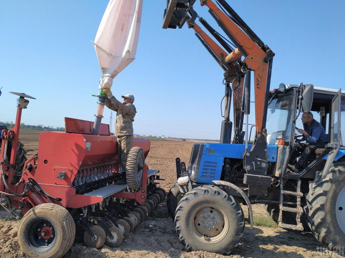 Земельная реформа не отменяет право украинцев на бесплатные 2 гектара - Минагрополитики