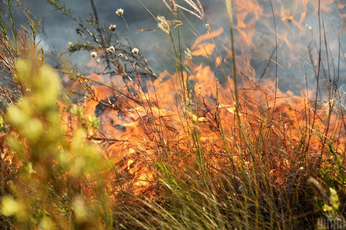 В девяти областях объявили чрезвычайный уровень пожарной опасности