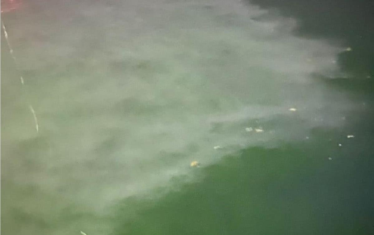 В Одессе известный отель сливает в море канализационные воды - соцсети