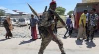 В Эфиопии 53 военных обвинили в убийствах мирных жителей