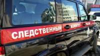 В Алтайском крае девочку насмерть придавило воротами
