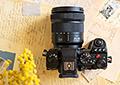 Новая статья: Обзор фотокамеры Panasonic Lumix S5: лучше меньше, да лучше