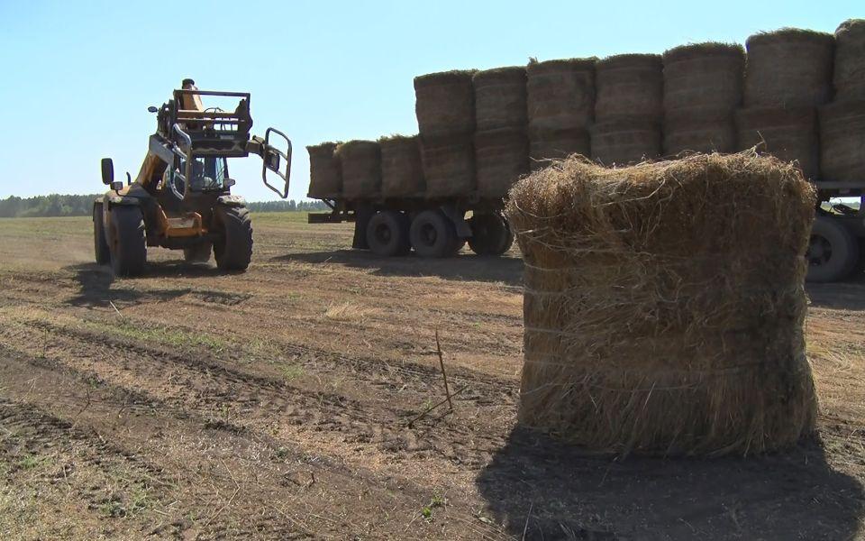 Посевная 2021: алтайские аграрии обсудили новые подходы и технологии