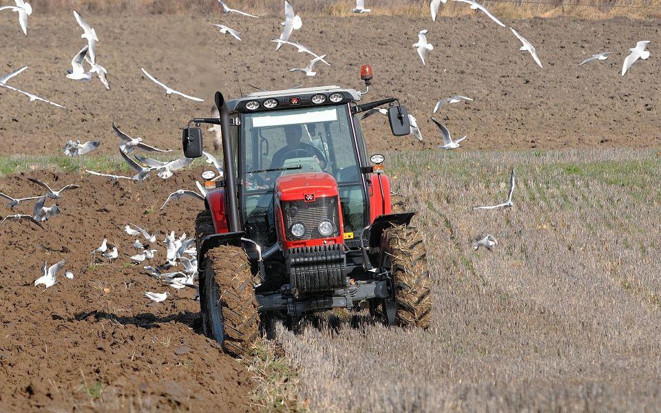 Алтайские фермеры прогнозируют начало посевной не раньше Пасхи