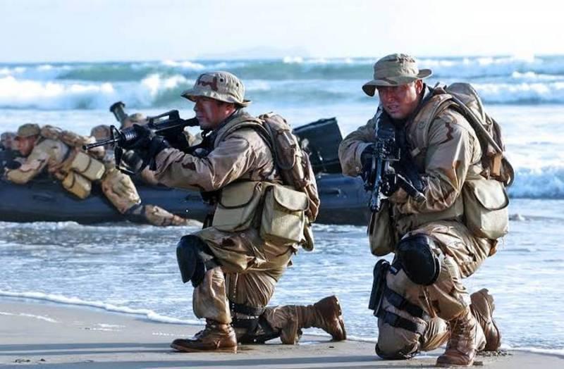 Немецкое издание: «Неприступную крепость» Крым помогут взять «морские котики» и «зеленые береты»