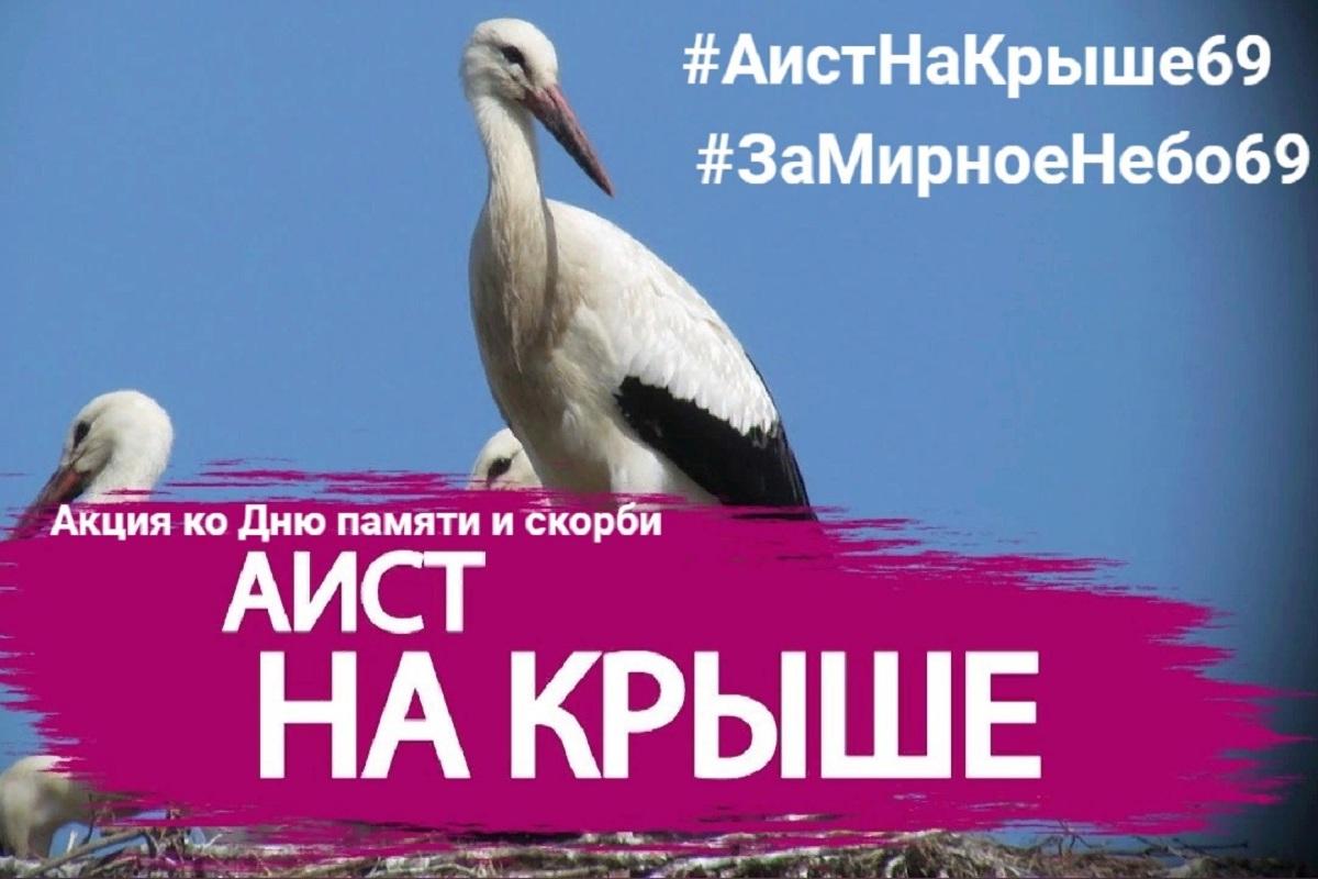 В Тверской области пройдёт патриотическая акция «Аист на крыше»
