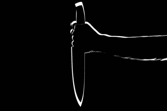 Российский студент зарезал одногруппника