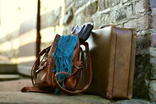 В Ленинградской области найдена сумка с расчленённым телом женщины