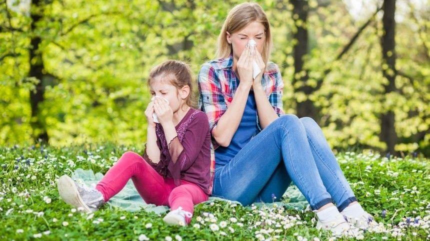 К каким опасным заболеваниям приводит аллергия на пыльцу?