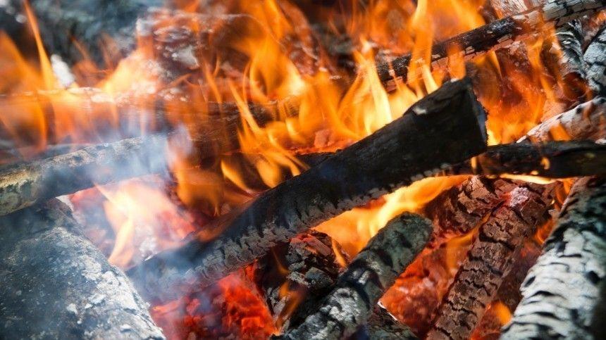 Костры из деревень: человеческая беспечность как причина природных пожаров