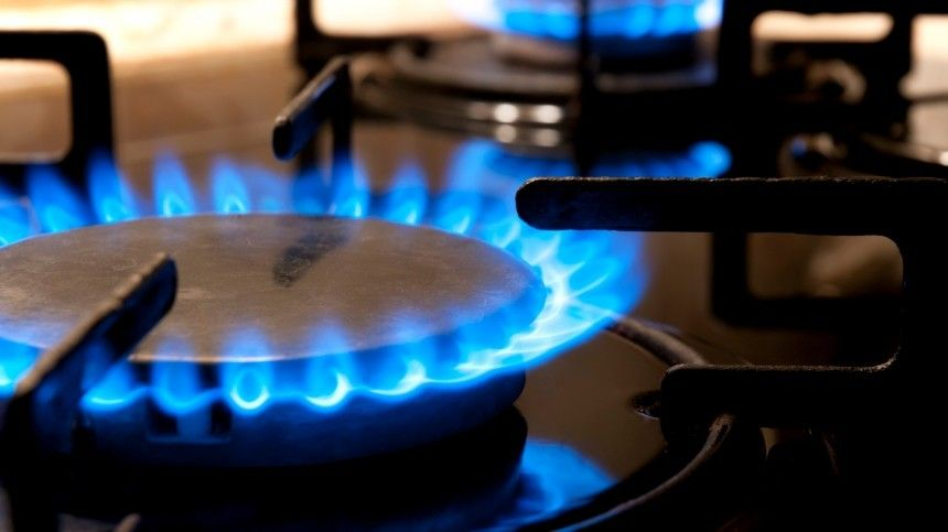 В «Газпроме» раскрыли, кому проведут газ в дом бесплатно