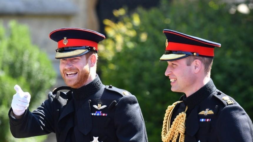 Принцы Уильям и Гарри отказались выступать вместе на открытии памятника матери