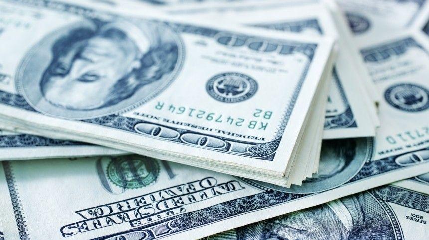 Каких сюрпризов ожидать от доллара в текущем году? — прогноз экономиста