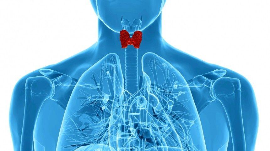 К каким смертельным осложнениям могут привести заболевания щитовидной железы?