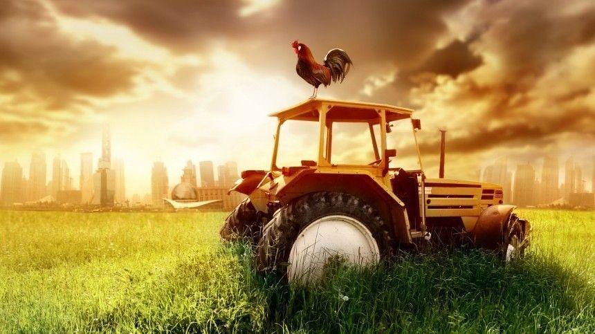 В народную программу «Единой России» предложено включить аграрную политику