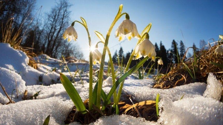 Мясников рассказал, как пережить непростую во всех отношениях весну 2021 года