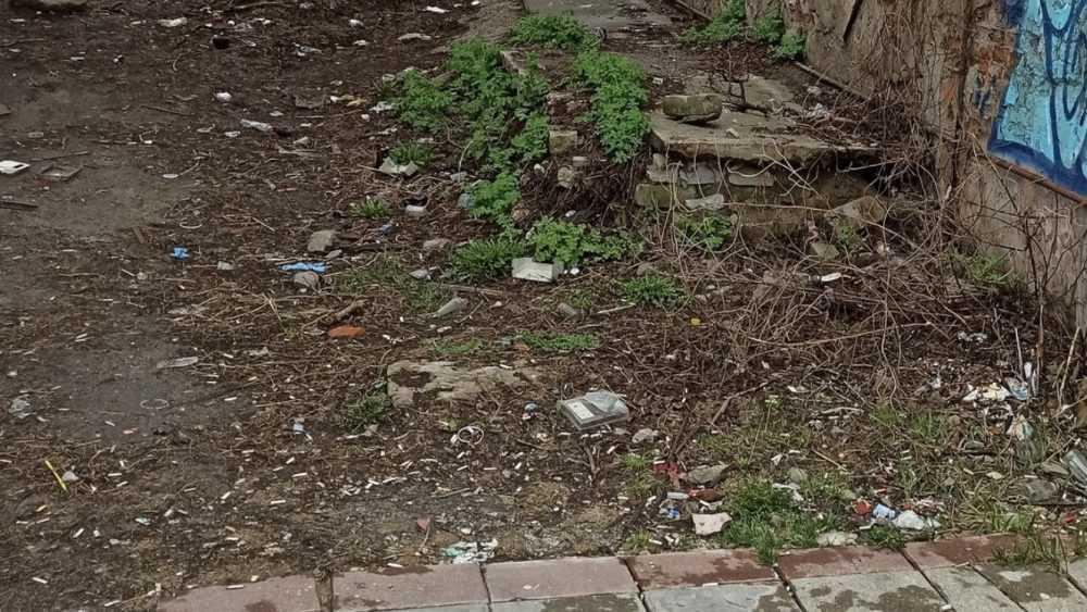 Горожане пожаловались на мусор и переполненные урны в центре Брянска