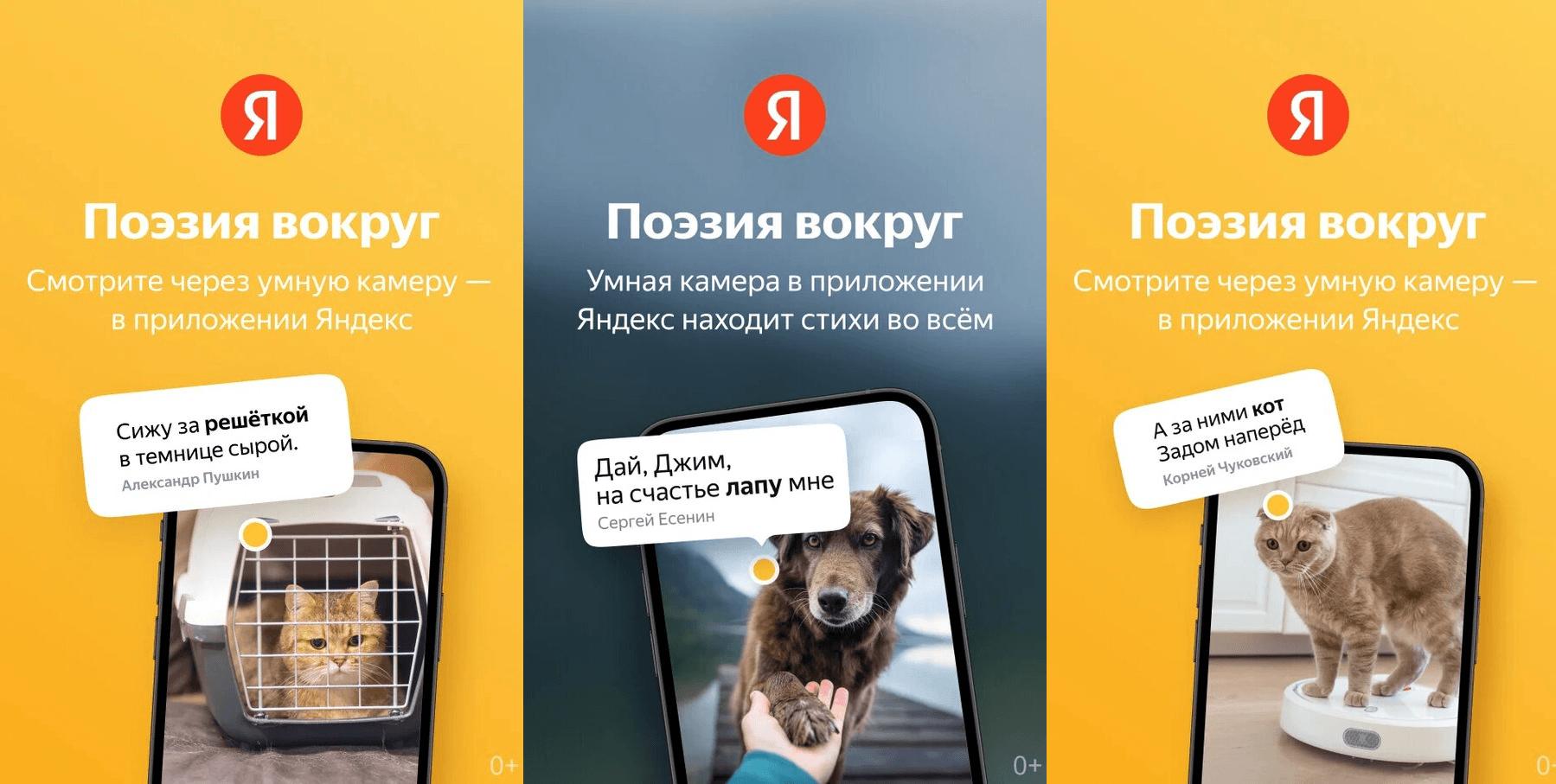 Приложение камеры Яндекса научилось накладывать стихи на окружающие предметы