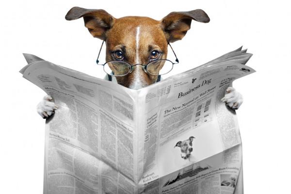 Доллар может показать вторую неделю снижения кряду из-за 'голубиной' позиции ФРС