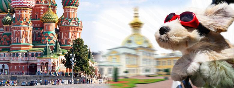 Между Москвой и Санкт-Петербургом построили квантовую линию связи