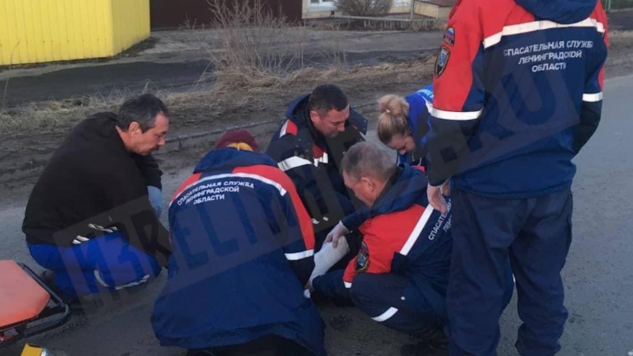 Сбившую девочек-подростков на переходе автоледи задержали в Ленобласти