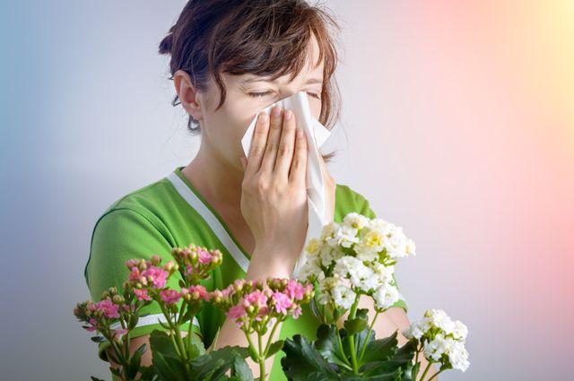 Букет для аллергика. Какие цветы самые безопасные?