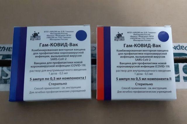 Более 50 млн доз вакцины от коронавируса будет выпущено в РФ к маю