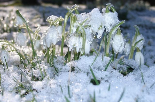 Синоптик рассказал, когда потеплеет в европейской части России