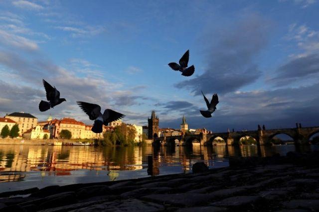 Генпрокурор Чехии уходит в отставку