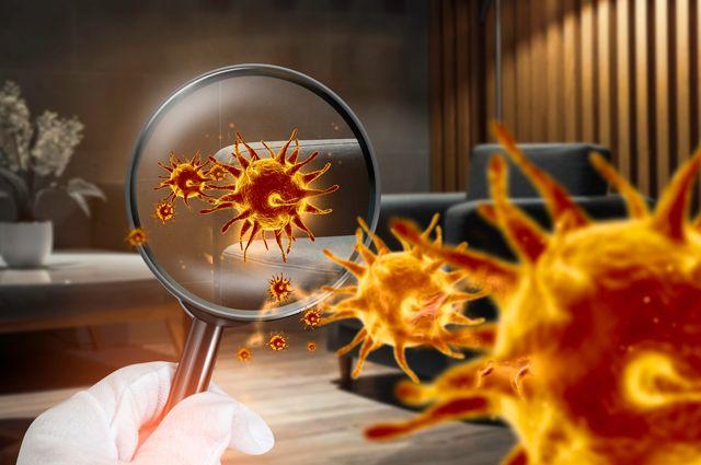 Дали жару. В России изобрели прибор для очистки воздуха от коронавируса