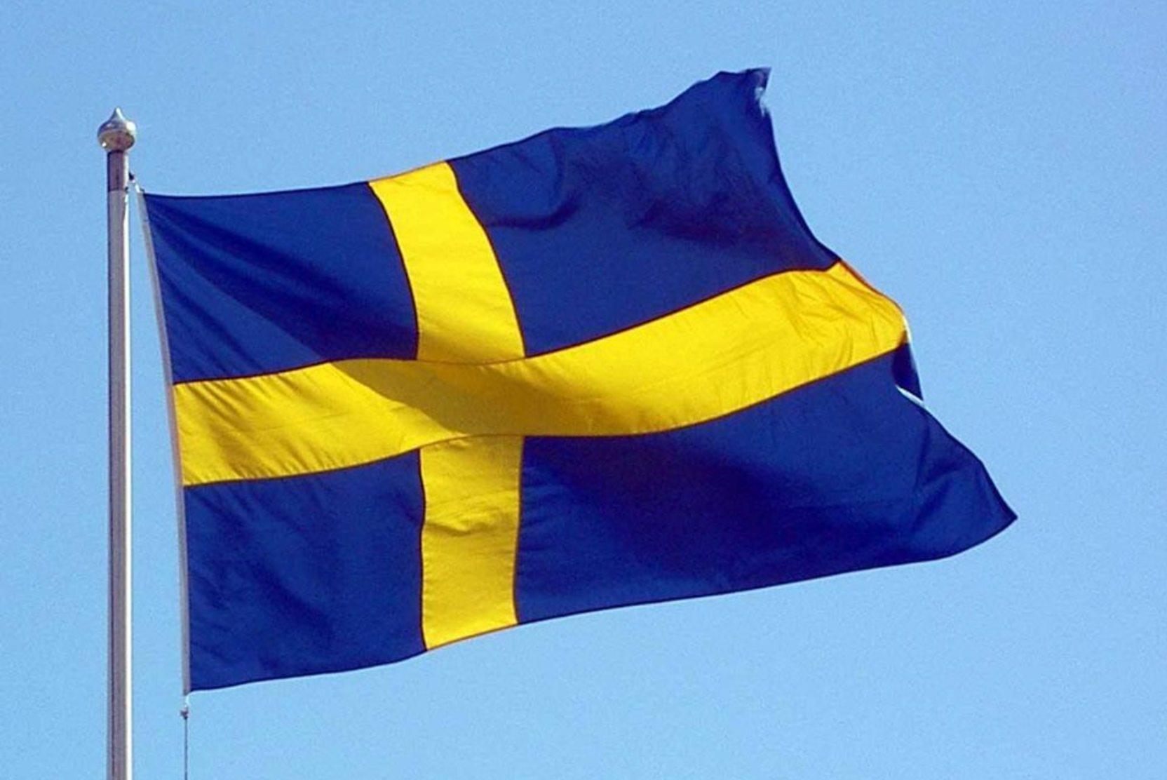 В Швеции заявили о способности создать России «военные проблемы»