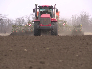 Урожай под угрозой: власти намерены сдержать рост цен на удобрения