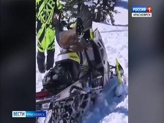 Красноярский глухарь напал на туристов