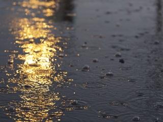 'Ты неси меня, река': несколько приморских сел могут 'утонуть'