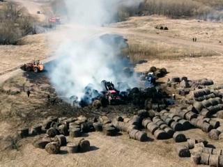 Вести. В Холмогорском районе Архангельской области огонь уничтожил 60 рулонов сена