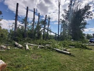 Пиливший деревья мужчина погиб при падении люльки автовышки