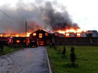Под Нижним Новгородом тушат крупный пожар в конюшне