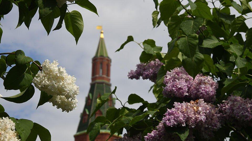 В Европейскую часть России придет пятидневное потепление