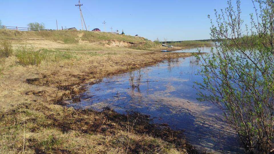 Экологическая катастрофа: хроника событий разлива нефти в Коми