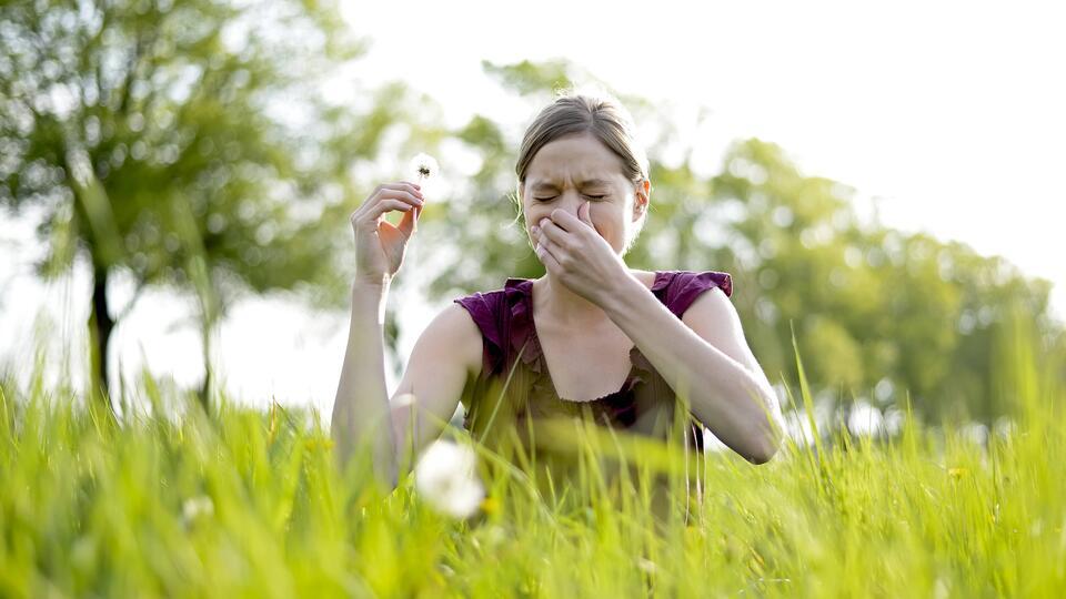 Врач дал аллергикам советы по борьбе с реакцией на пыльцу и пыль