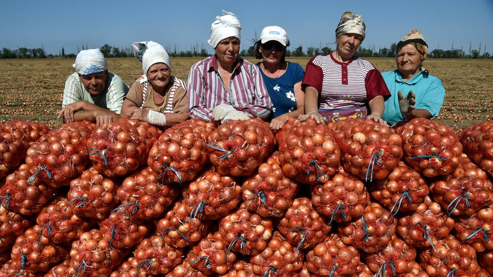 Сельхозинвестиции: эксперт указал на альтернативы банковским вкладам