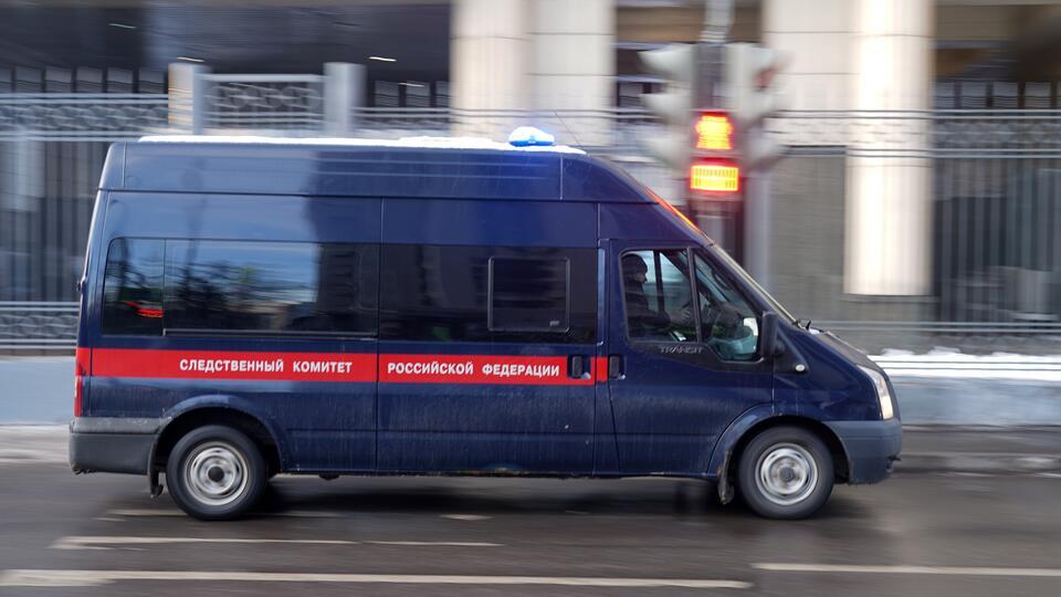 После удушения 11-летней девочки собаками в Подмосковье возбудили дело