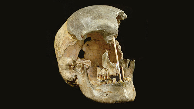 Nature (Великобритания): старейшая ДНК представителей вида «хомо сапиенс» говорит о его близкой связи с неандертальцами
