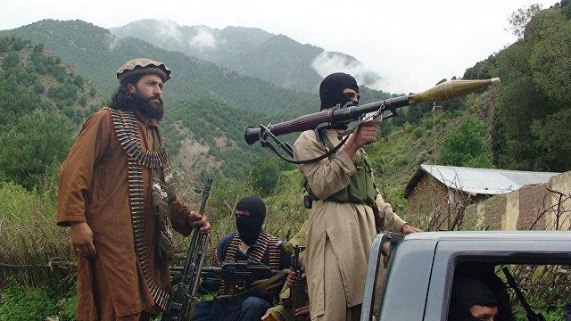Haqqin (Азербайджан): это вам не оборванные и нечёсаные «духи», а современная армия «Талибан»*
